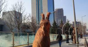 Ankara'da Kurumuş Ağaçlar Heykel Oldu